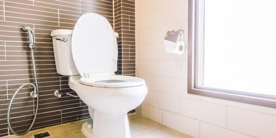 smart toilet bathroom trend